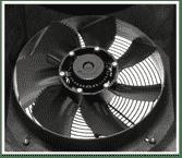 Innovative Fan